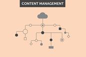 content management index image