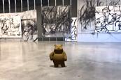 Small bear 3x2
