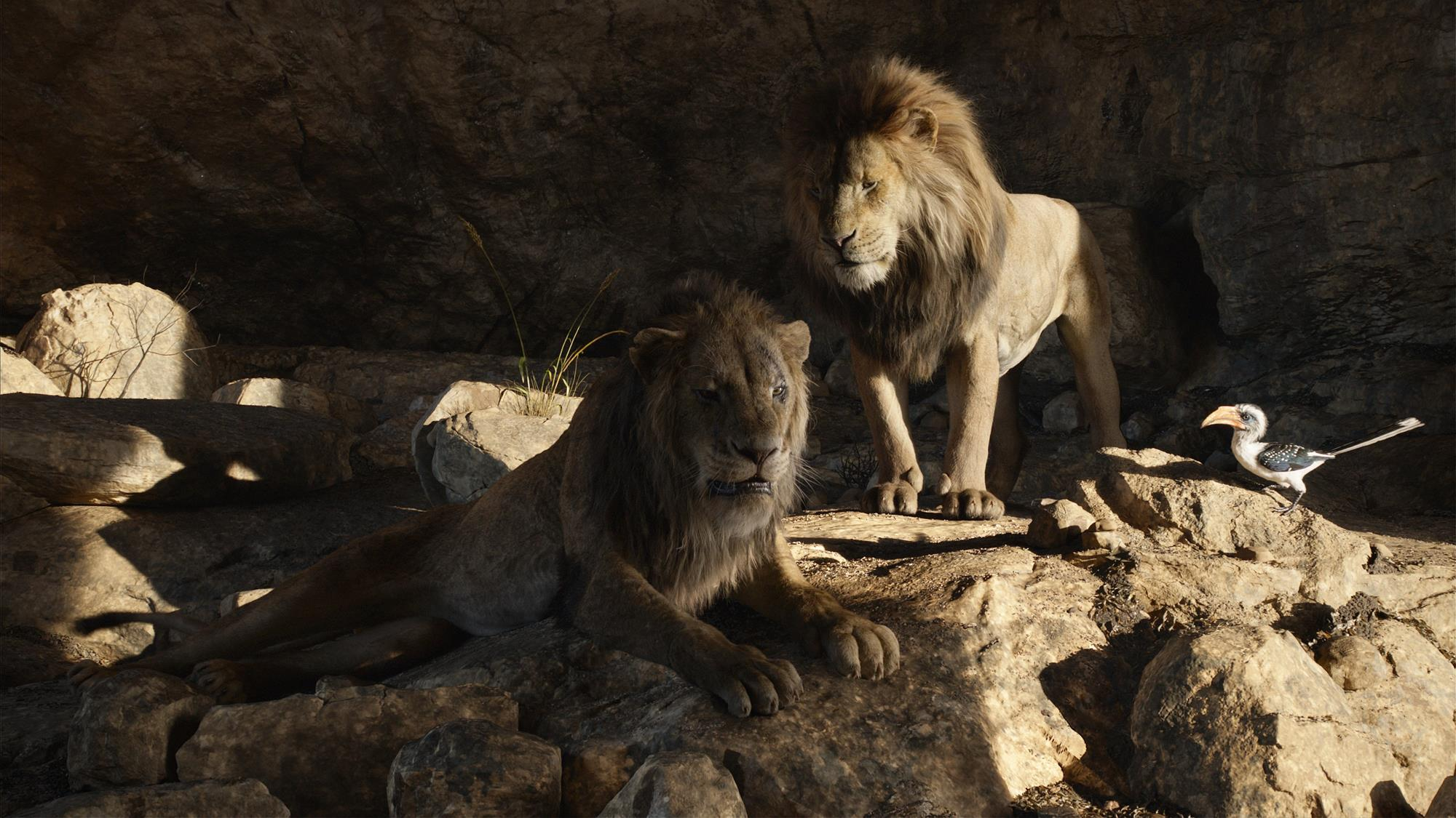 Animal Instincts 3 Full Movie behind the scenes: the lion king | industry trends | ibc