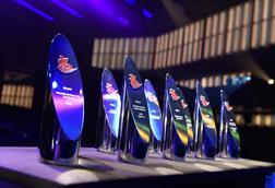 Awards (10)